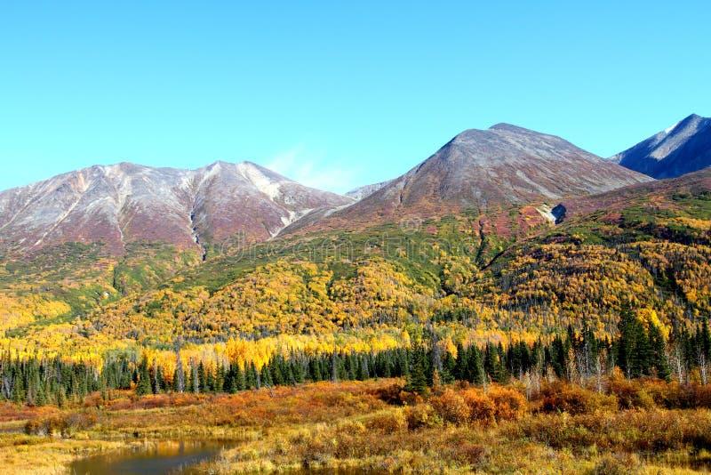 Wrangell-St. Montañas de Elias fotos de archivo libres de regalías