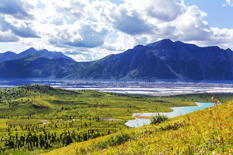 Wrangell-StElias NP fotografia stock