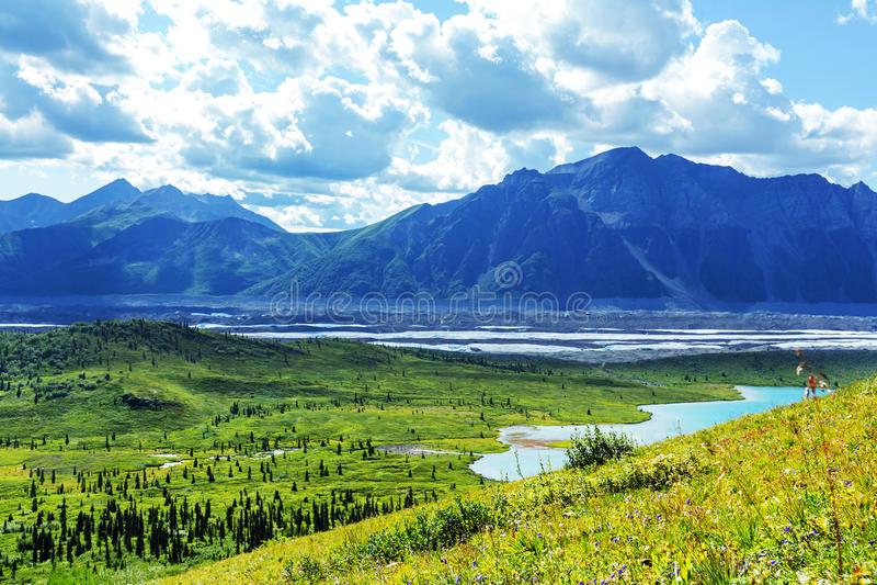 Wrangell-StElias NP arkivfoto