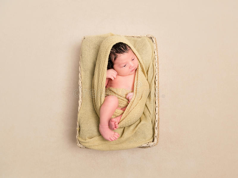Wrapped black-haired baby basket, topview royalty free stock image