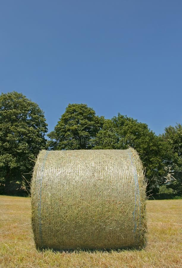 Download Wrapped Hay Bale stock photo. Image of countryside, drying - 912884