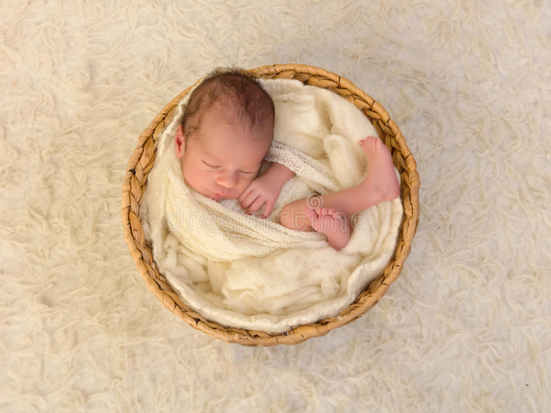 Wrapped newborn baby royalty free stock photo