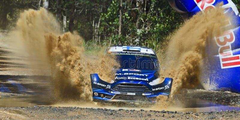 WRC 2014 Front Sun 02 Ford Splash lizenzfreie stockfotos