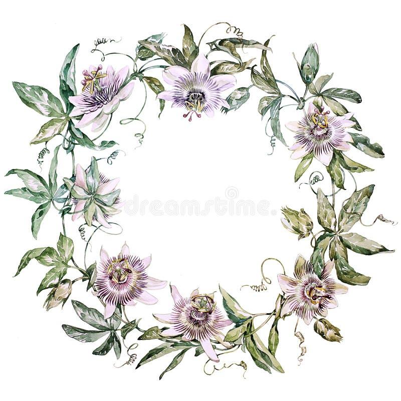 Wreath lizenzfreies stockbild
