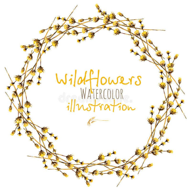 Wreath, circle frame border with yellow dry wildflowers vector illustration