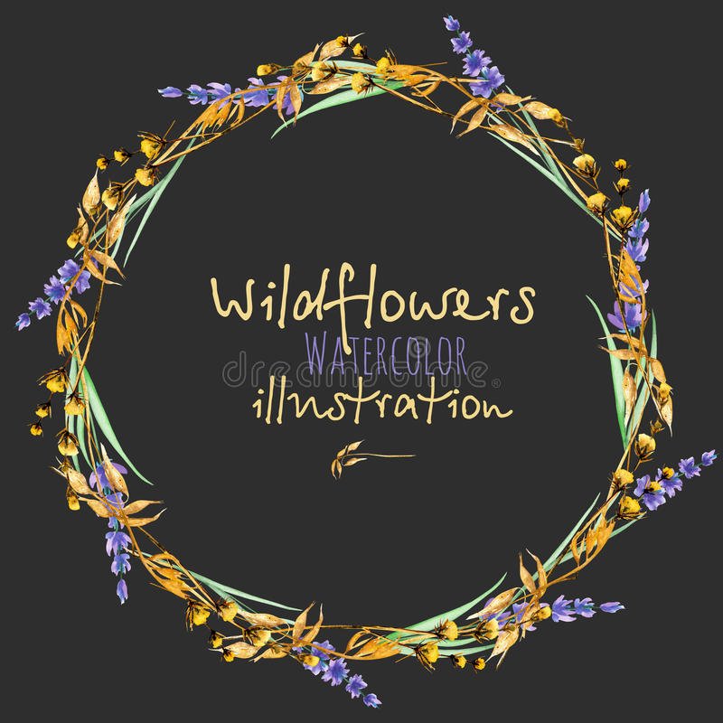 Wreath, circle frame border with yellow dry wildflowers and lavender flowers. Hand drawn in watercolor on a dark background royalty free illustration