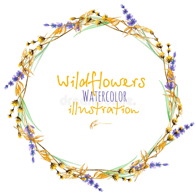 Wreath, circle frame border with yellow dry wildflowers and lavender flowers. Hand drawn in watercolor on a white background vector illustration