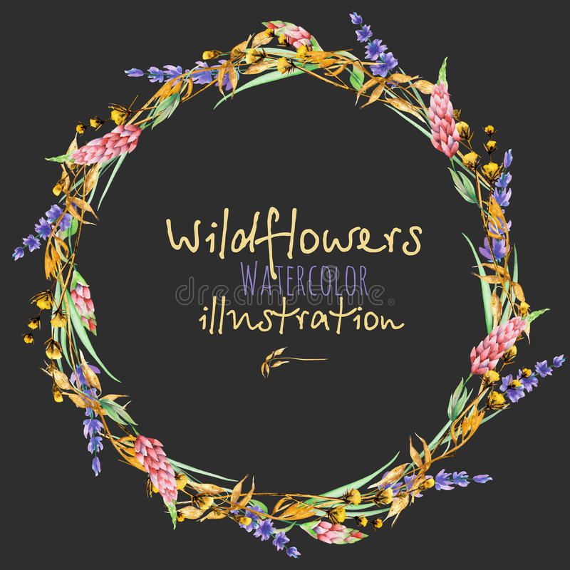 Wreath, circle frame border with yellow dry wildflowers, lupine and lavender flowers. Hand drawn in watercolor on a dark background royalty free illustration