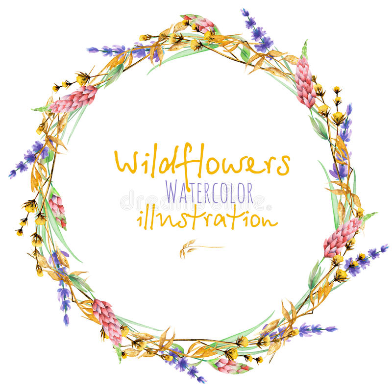 Wreath, circle frame border with yellow dry wildflowers, lupine and lavender flowers. Hand drawn in watercolor on a white background stock illustration
