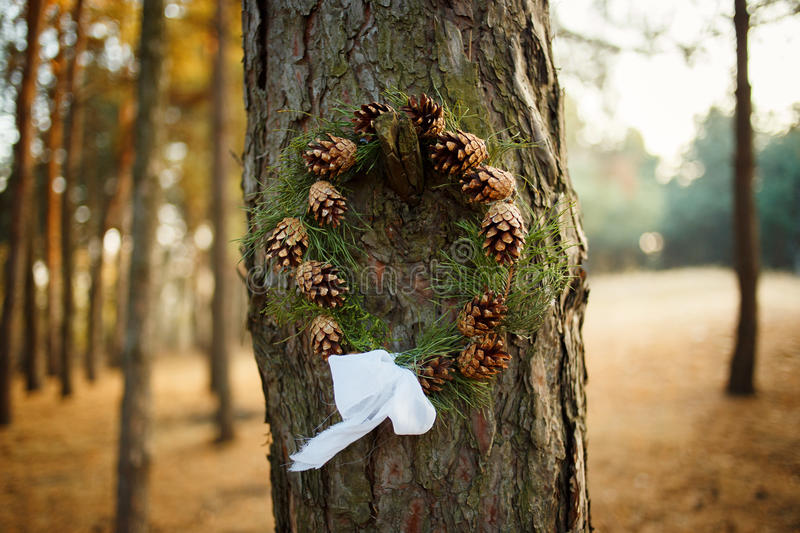 Wreath of cones in the forest. Round wreath with cones and spruce. Blurred background, outdoors and space. Daylight, sunny autumn day royalty free stock photo