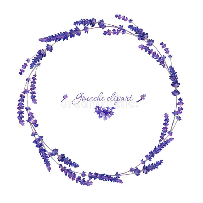Gouache floral wreath with lavender. Hand-drawn clipart for art work and weddind design. Wreath consist of 4 type of lavender flowers and lavender stock illustration