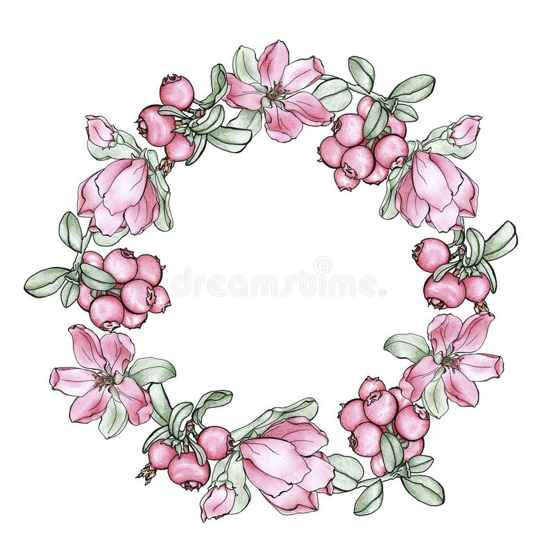 A wreath of flowers and berries. royalty free stock images