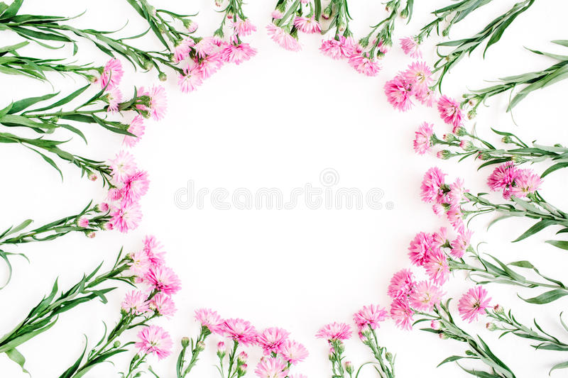 Wreath frame made of pink wildflowers, green leaves, branches on white background royalty free stock photo
