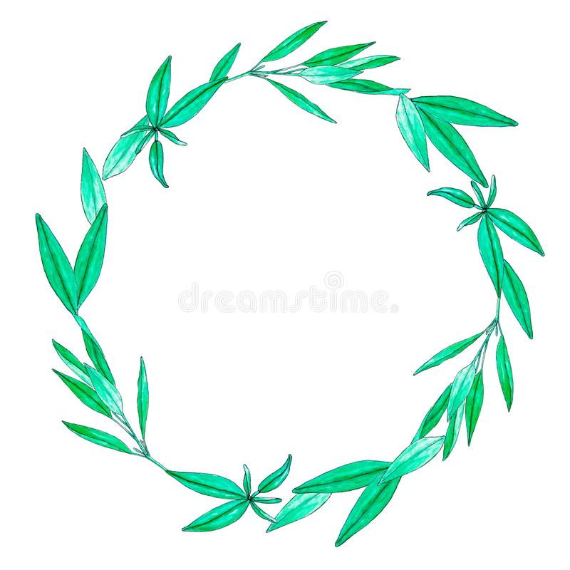 Wreath with hand painted watercolor sage leaves isolated on white vector illustration