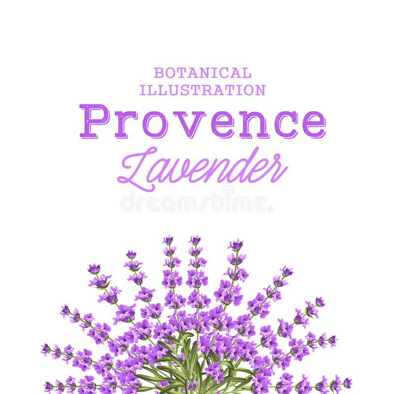 Wreath of lavender flowers. In watercolor paint style. The lavender elegant card with frame of flowers and text. Lavender garland for your text presentation stock illustration