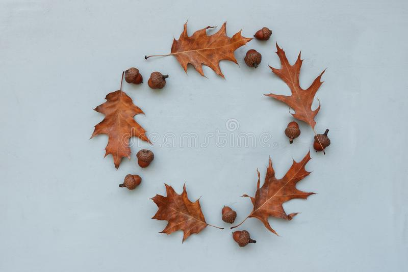 Wreath made of autumn oak leaves and acorns on gray wooden background. Flat lay. Top view. Copy space. Autumn fall or Thanksgiving royalty free stock photography