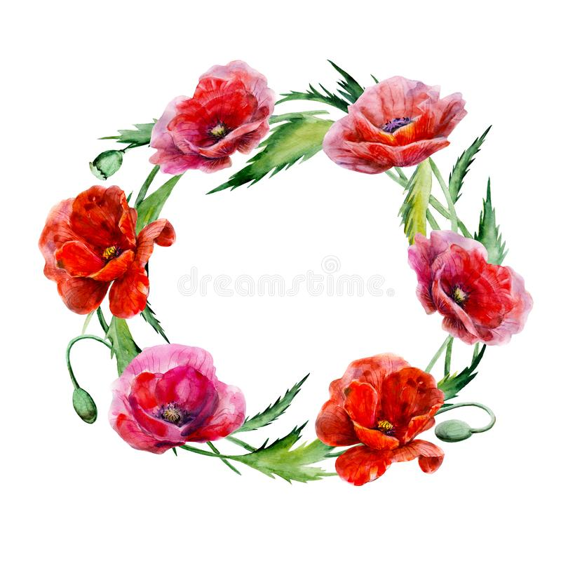 Wreath of poppy flowers. Hand drawn watercolor illustration. Round form red colors floral elements for design isolated on white. stock illustration