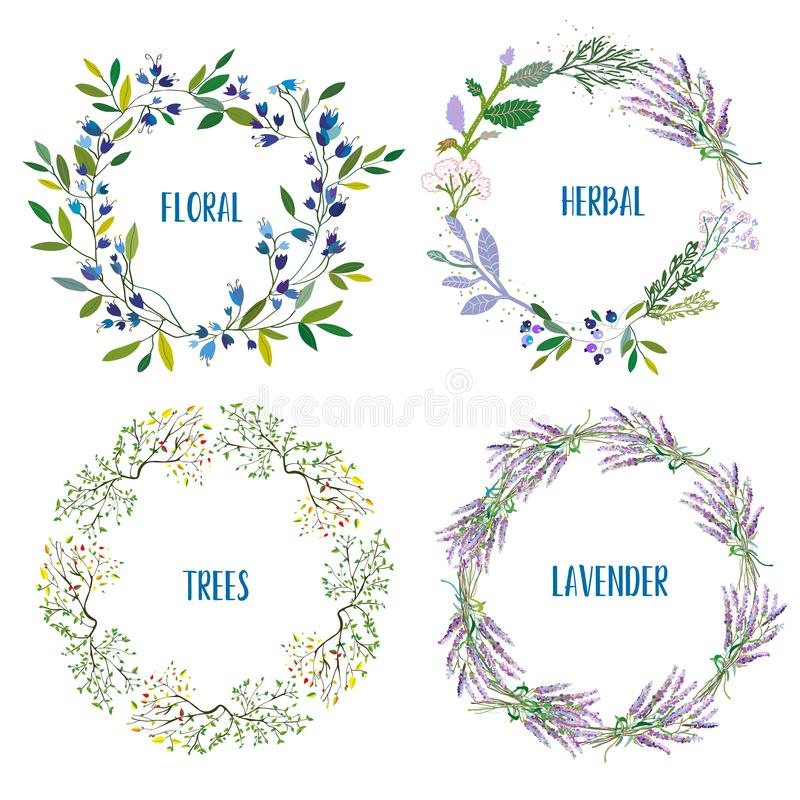 Wreath set with flowers, herbs, lavendes, tree branches. Vector illustration. Wreath set with flowers, herbs, lavendes, tree branches. Vector graphic vector illustration