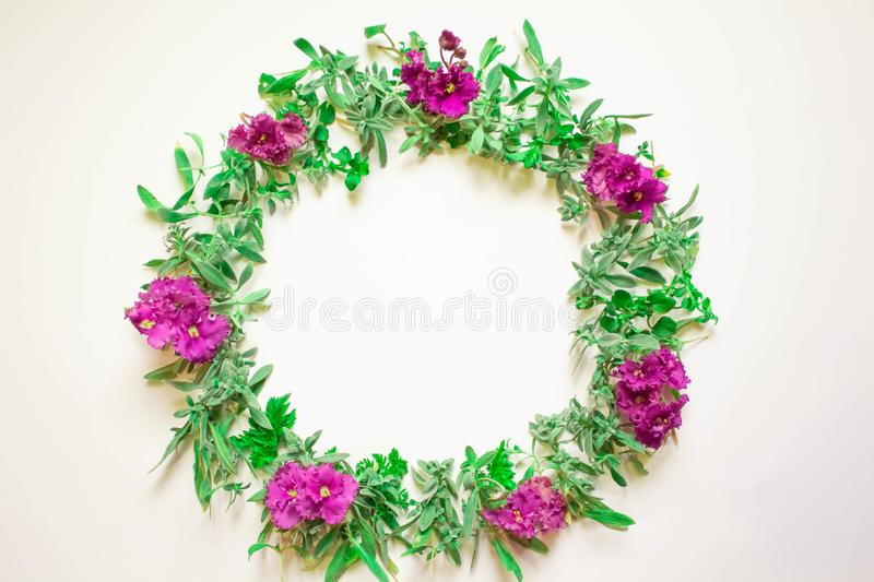 A wreath of violets on a white background. Round frame of purple flowers and fresh grass. Summer flowers.  Flat lay, top view. stock photos