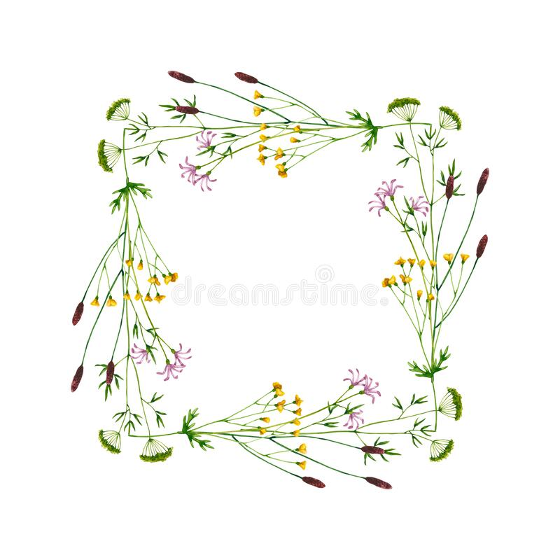 Free Wreath With Watercolor Wildflowers. Hand Drawn Illustration Is Isolated On White. Square Frame Stock Photos - 217783533