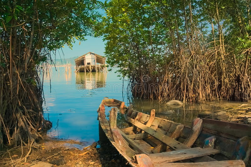 The wreck of a Local fishing boats and Accommodation for watch the fish. The wreck of a Local fishing boats parked on the mangrove forest and Accommodation for stock images