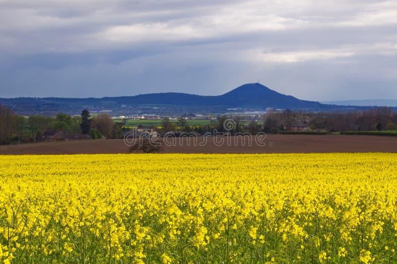 The Wrekin view stock photography