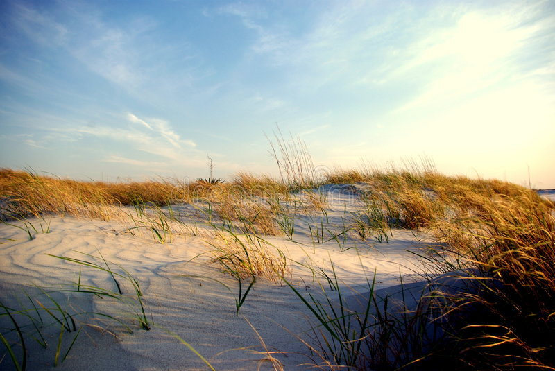 Wrightsville Dunes at sunset. Dunes at the south end of Wrightsville Beach around sunset royalty free stock image