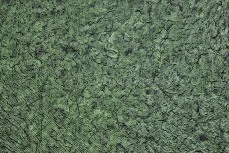 Wrinkled a chiffonné la texture extérieure - backgrou abstrait vert-foncé photos libres de droits