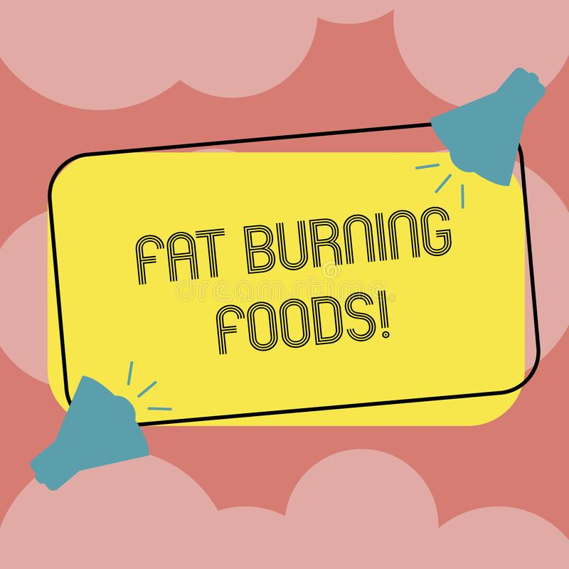 Writing note showing Fat Burning Foods. Business photo showcasing Certain types of food burn calories as you chew them. Two Megaphone with Sound icon on Color royalty free illustration