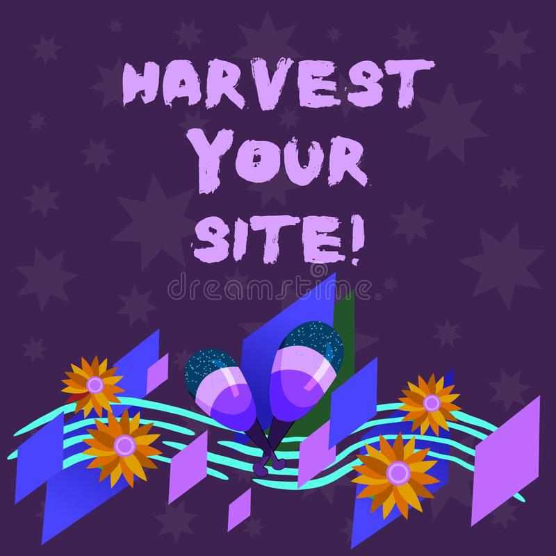Writing note showing Harvest Your Site. Business photo showcasing time when you reap what you sow before pick or gather. It Colorful Instrument Maracas Handmade royalty free illustration