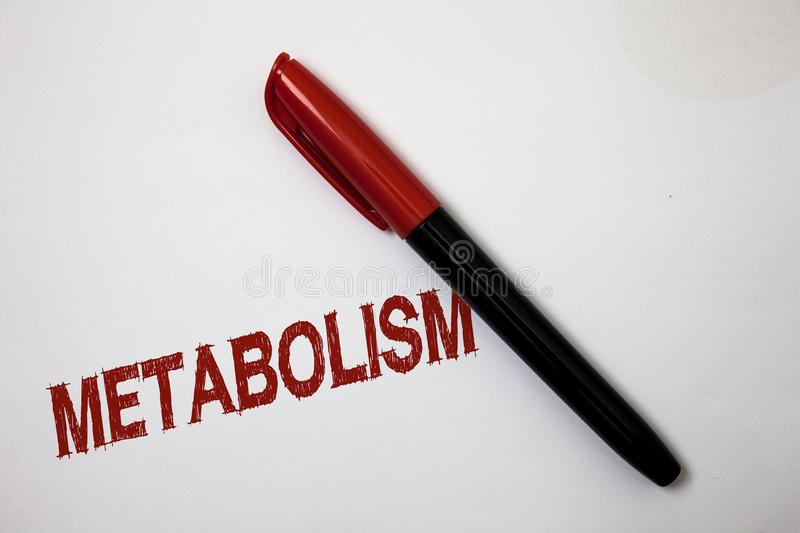Writing note showing Metabolism. Business photo showcasing Chemical processes in body to produce energy food processing Softliner. Pointer ink handwriting note royalty free stock photos