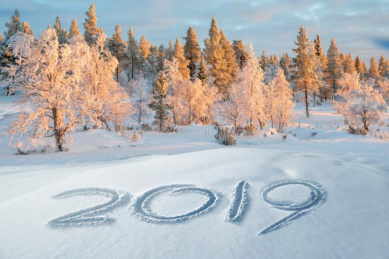 2019 written in the snow, snowy trees winter landscape in the background stock photography