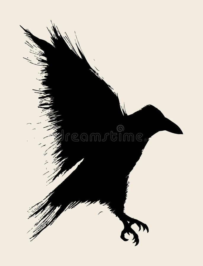 wrona ilustracji