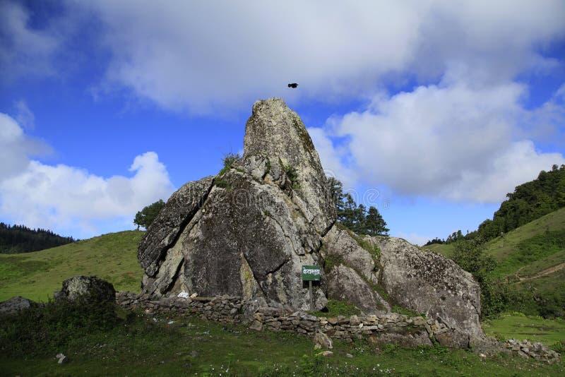 Wrona na wierzchołku zdjęcie royalty free