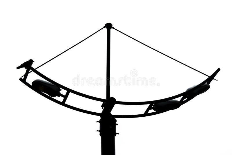 Wroni obsiadanie na lampionie przeciw białemu niebu w górę biel czarny zamknięta fotografia zdjęcia stock