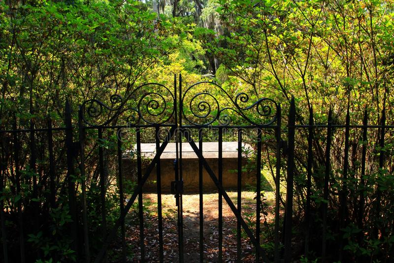 Can't get out. Wrought iron fence around a cemetery plot royalty free stock image