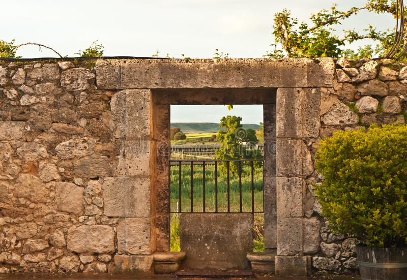 Wrought iron gate in limestone wall in Spain. Front view, close up of a wrought iron gate in limestone wall of a third generation vineyard in southeast region of royalty free stock images