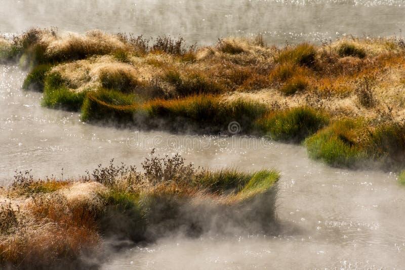Wrzący gorąca woda baseny W Yellowstone parku narodowym zdjęcia royalty free