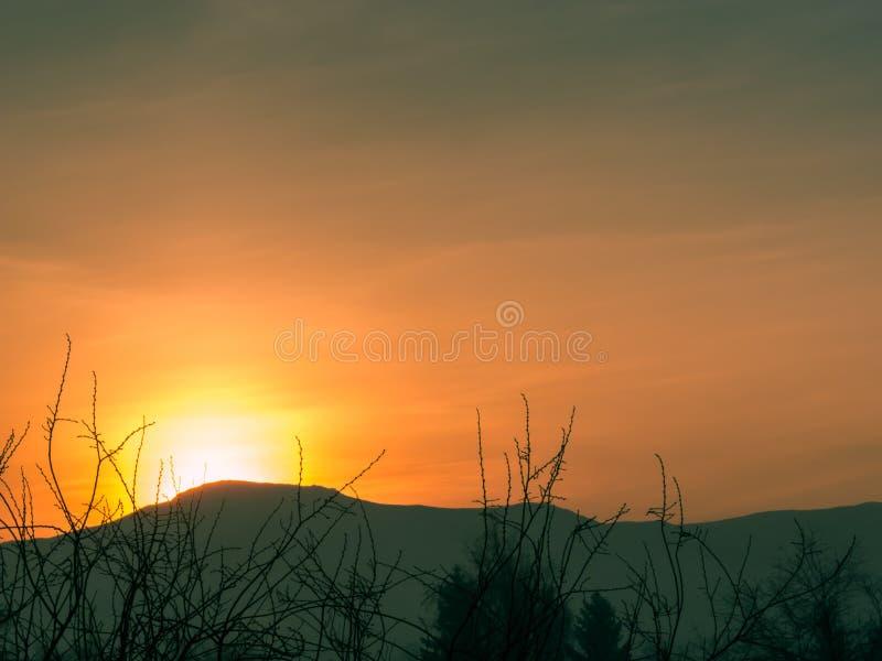 Wschód słońca w wczesnym zima ranku przez błękitnych gór W przedpolu są treetops fotografia royalty free