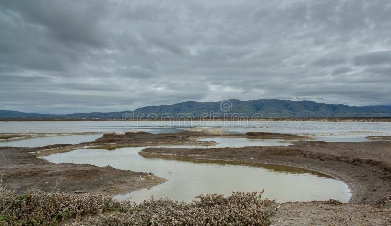 Wschód podpalane góry na chmurnym dniu Alviso Marina okręgu administracyjnego park, Santa Clara okręg administracyjny, CA fotografia royalty free