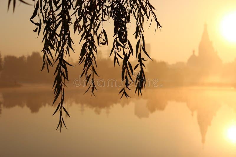 Wschód słońca blisko kościół i jeziora Mgła nad wodą spojrzenie przez wierzby rozgałęzia się przy świtem zdjęcie royalty free