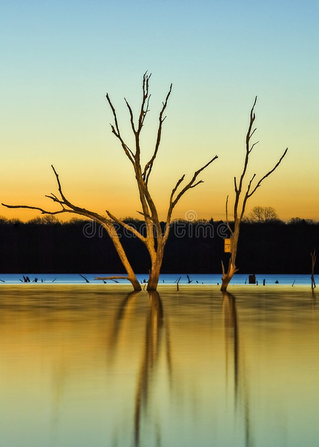 wschód słońca do jeziora. zdjęcie royalty free