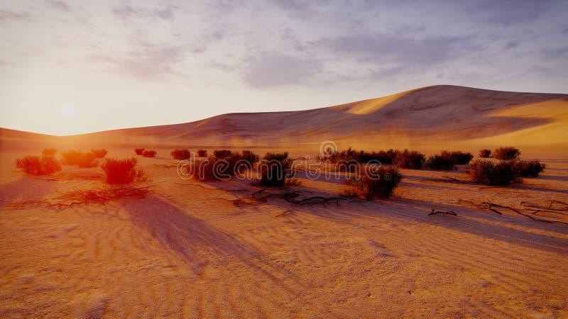 Wschód słońca lub zmierzch w pustyni