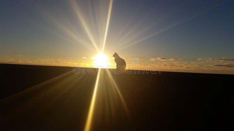 Wschód słońca na Granie Canaria fotografia stock
