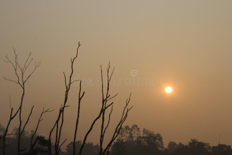 Wschód słońca na ranku obraz stock