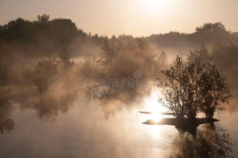 Wschód słońca nad bagnem z mgłą fotografia stock