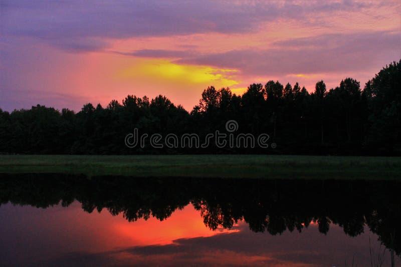 wschód słońca nad drzewami zdjęcia royalty free