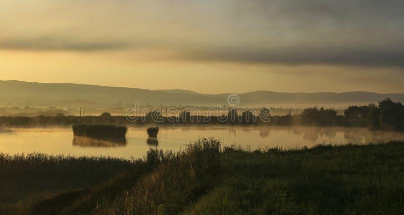 Wschód słońca nad fishpond zdjęcie royalty free