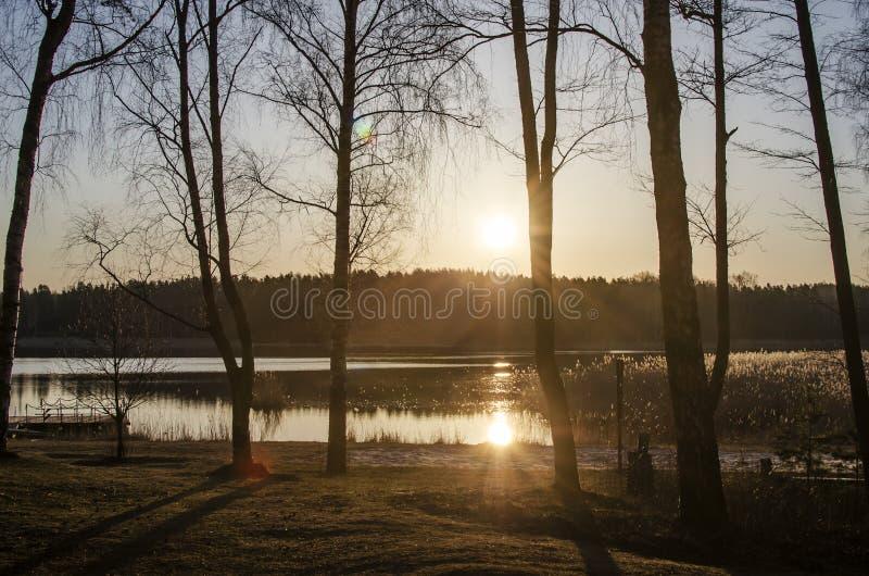 Wschód słońca nad jeziorem wiosną Sylwetki leśne i promienie wschodzącego słońca zdjęcia royalty free