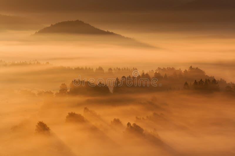 Wschód słońca Nad Mglistym krajobrazem Sceniczny widok Mgłowy ranku niebo Z Powstającym słońcem Nad Mglisty las obrazy royalty free